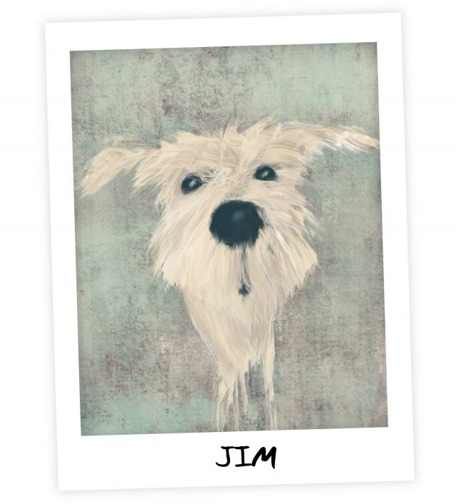 Jim Q and A from Word of Dog book by Megan Anderson
